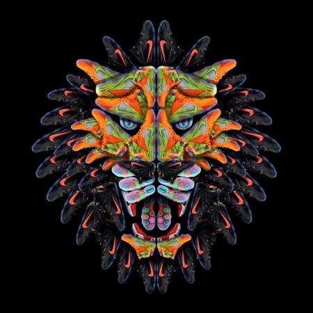 lebron12 lion wearekidz by andy gellenberg